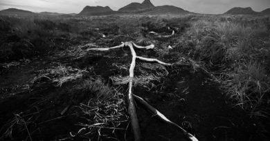 Příběh fotografie Fotoexpedice Skotsko zapomenutý kus země na severu