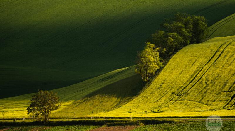 Krajinářské fotografie Fotoexpedice Moravské Toskánsko červen 2021 Martin Kamín